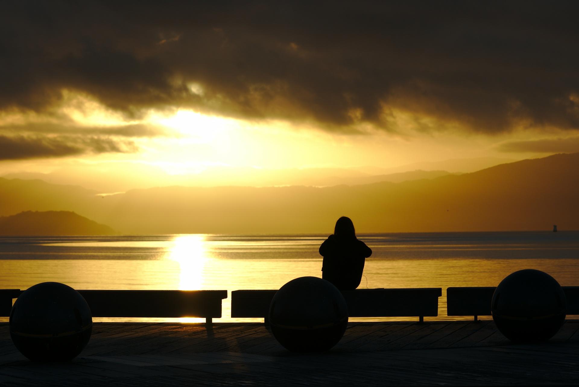 Golden Hour over Wellington Harbour